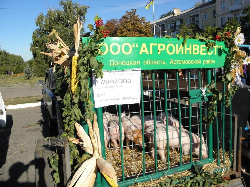В Краматорске открылась сельскохозяйственная ярмарка «Краматорская осень» (фото) - фото 5