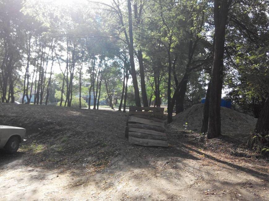 У Чернівцях у парку «Жовтневому» незаконно вирубали ліс, фото-2