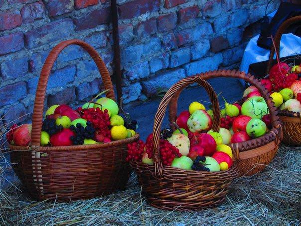 В павильоне «Верхние теплицы» провели праздник «Яблочный полдень» (фото) - фото 5