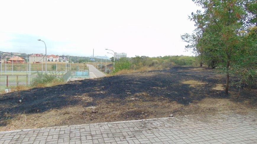 В Мариуполе у  спорткомплекса «Ильичевец» выгорел участок Приморского парка (ФОТОФАКТ) (фото) - фото 3