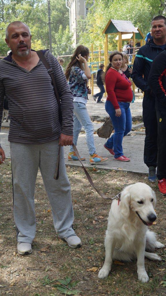 Выставка собак прошла в Бердянске (фото) - фото 2