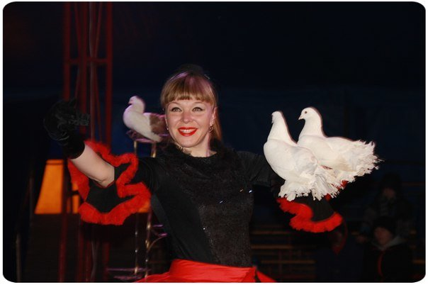 Великий цирк шапіто «Вогні Києва» у Вінниці (фото) - фото 3