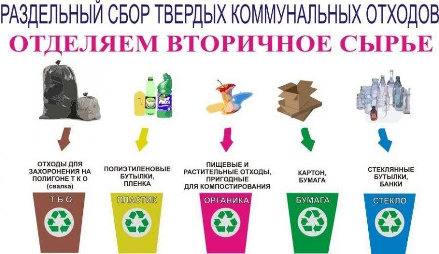 Криворожан призывают стать участником Всеукраинской эко-акции, сделать город чище и помочь раненому бойцу, фото-3