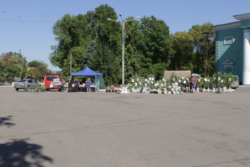 В Доброполье проходит ярмарка саженцев, фото-1