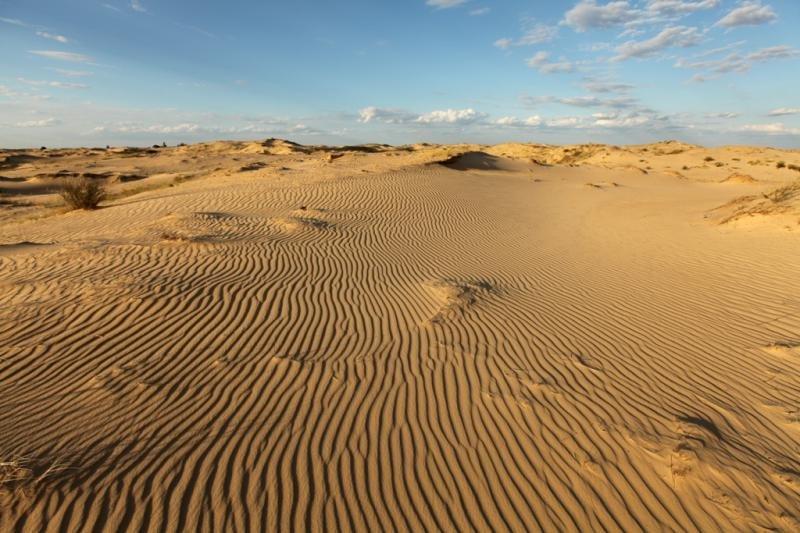 0552 алешковские пески1