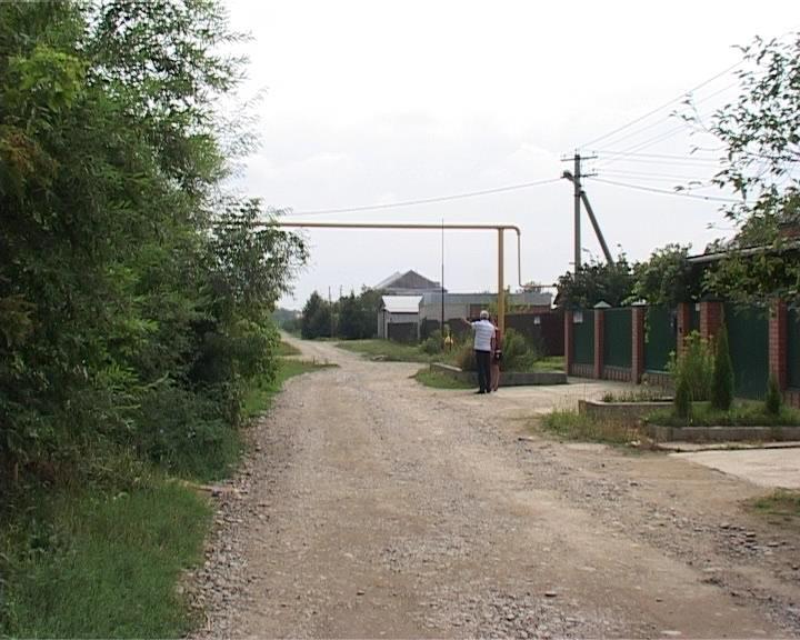 В Армавире заброшено садоводческое товарищество (фото) - фото 1