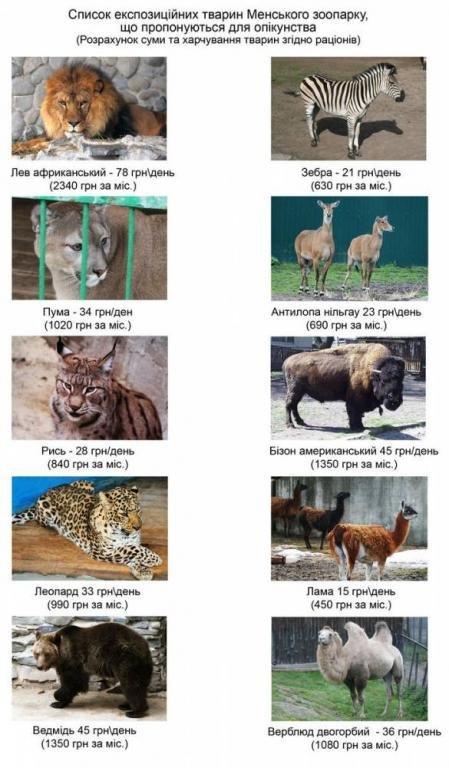 Единственный в Черниговской области зоопарк ищет для животных «шефов» (фото) - фото 1