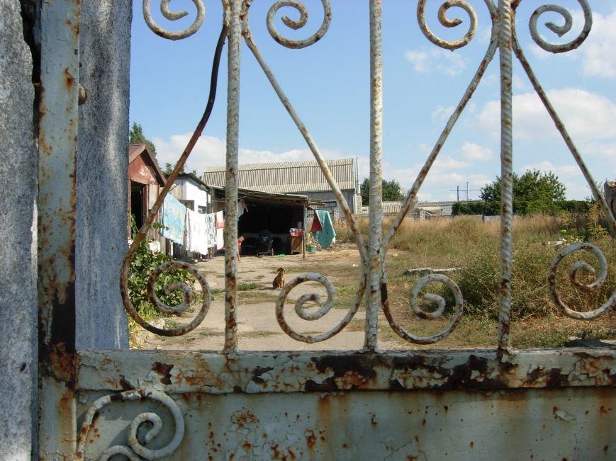 Семьи «неблагополучных» николаевцев содержат детей в антисанитарии (ФОТО) (фото) - фото 1