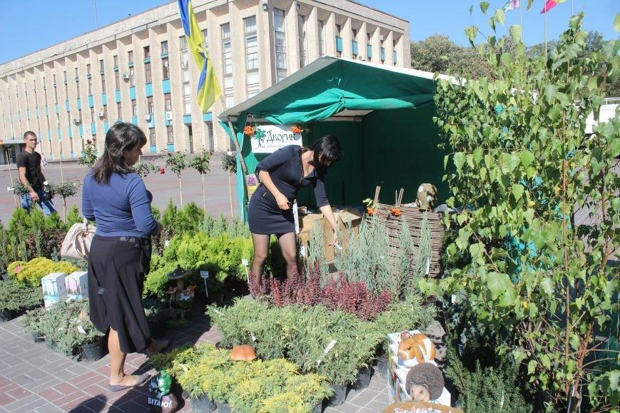 В Днепродзержинске открылась ярмарка «Золотая осень» (фото) - фото 9