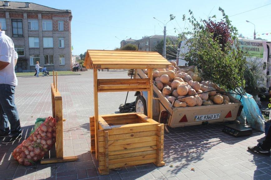В Днепродзержинске открылась ярмарка «Золотая осень» (фото) - фото 19
