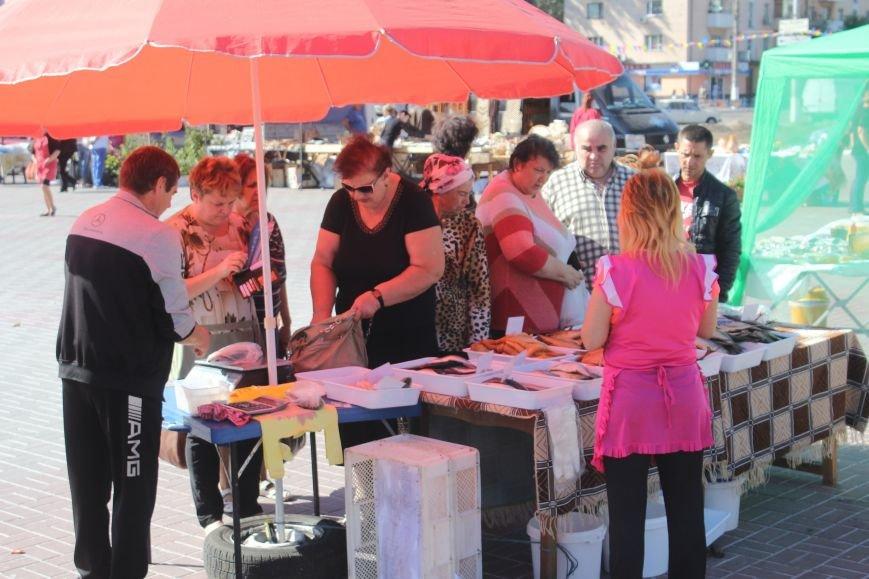 В Днепродзержинске открылась ярмарка «Золотая осень» (фото) - фото 4