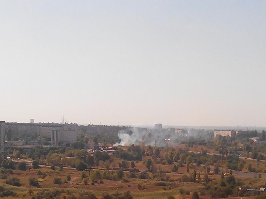 Криворожане продолжают поджигать зеленые насаждения на микрорайоне Восточном (ФОТО), фото-6