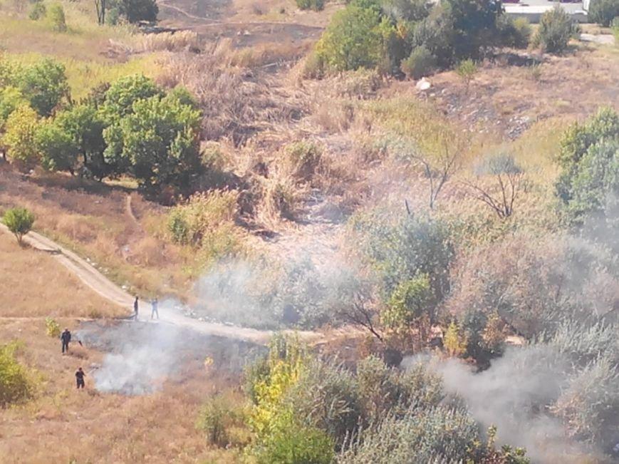 Криворожане продолжают поджигать зеленые насаждения ни микрорайоне Восточном (ФОТО) (фото) - фото 1