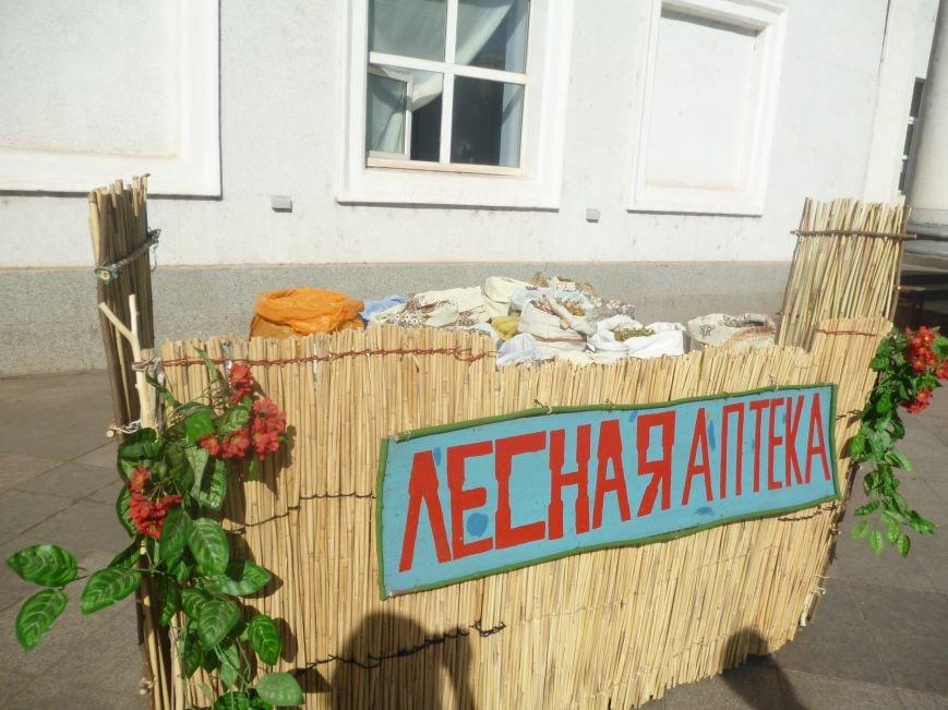 В Кривом Роге стартовал благотворительный фестиваль «Разом за єдине»  (ФОТО) (фото) - фото 2