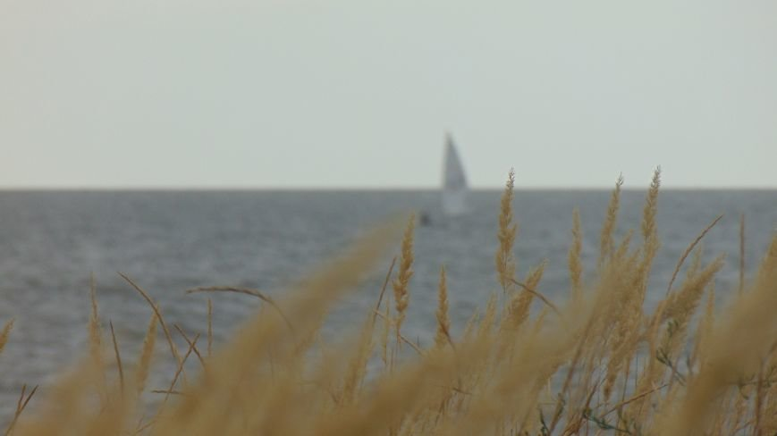 Фотопятница:«Побережье осени» (фото) - фото 3