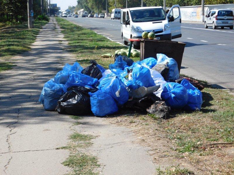 Николаевцы организовали субботник против захвата парка под возведение торгового центра (ФОТО) (фото) - фото 1
