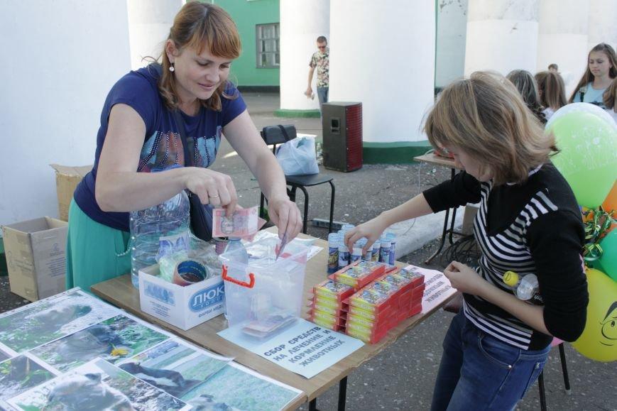 В Доброполье прошла «Добрая ярмарка» (ФОТО), фото-5