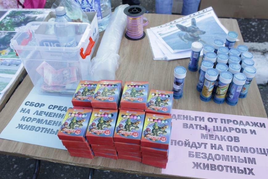 В Доброполье прошла «Добрая ярмарка» (ФОТО), фото-4