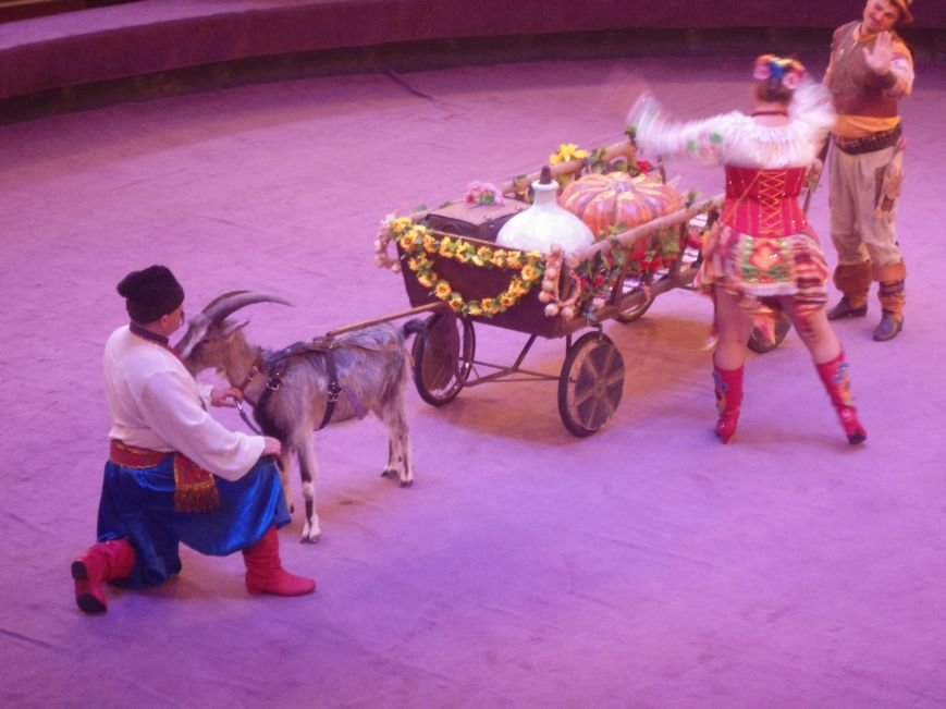 У Львівському цирку відбулась прем'єра міжнародної програми «Сузір'я цирків світу» (ФОТО) (фото) - фото 2