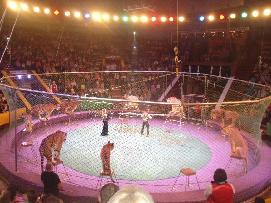 У Львівському цирку відбулась прем'єра міжнародної програми «Сузір'я цирків світу» (ФОТО) (фото) - фото 17