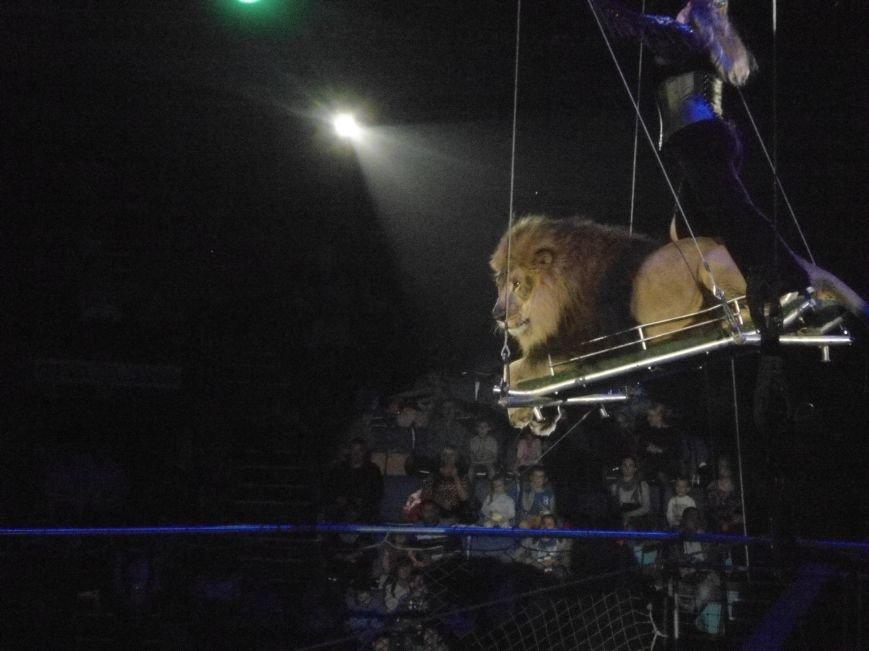 У Львівському цирку відбулась прем'єра міжнародної програми «Сузір'я цирків світу» (ФОТО) (фото) - фото 14