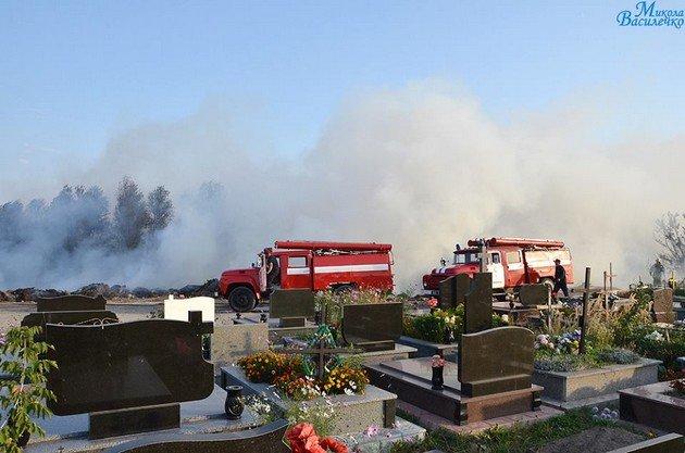У Тернополі на цвинтарі рятувальники гасили масштабну пожежу (фото, відео) (фото) - фото 1