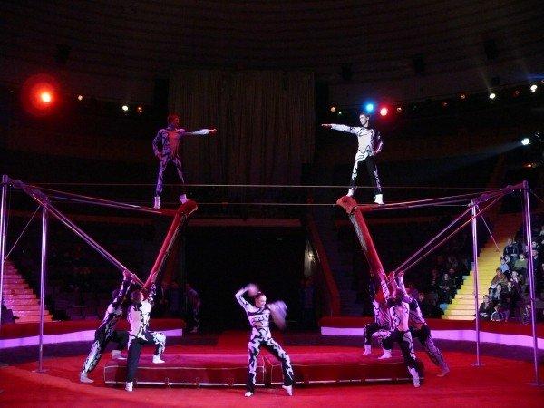Открытие сезона Днепроептровского госцирка с новой программой «ТЕРРИТОРИЯ РИСКА» (фото) - фото 1