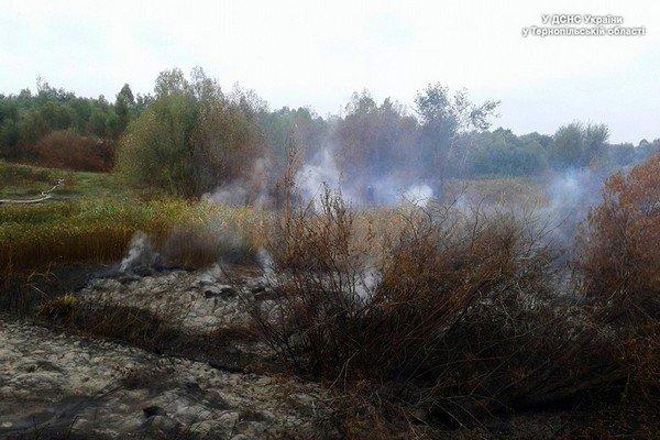 На Тернопільщині рятувальники гасять пожежу на торфополі (фото) (фото) - фото 1