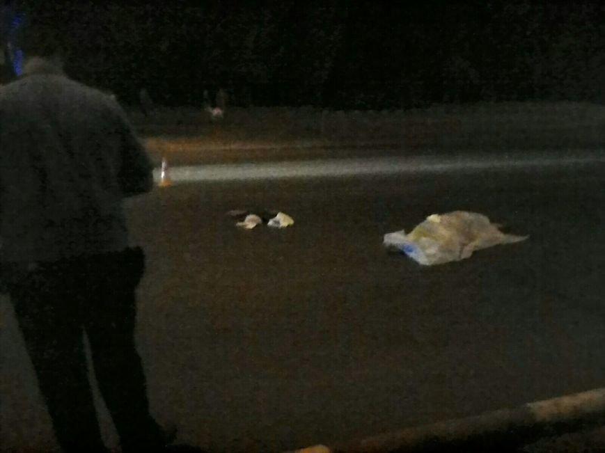 В Кривом Роге  под колесами микроавтобуса погибла женщина (ФОТО), фото-2