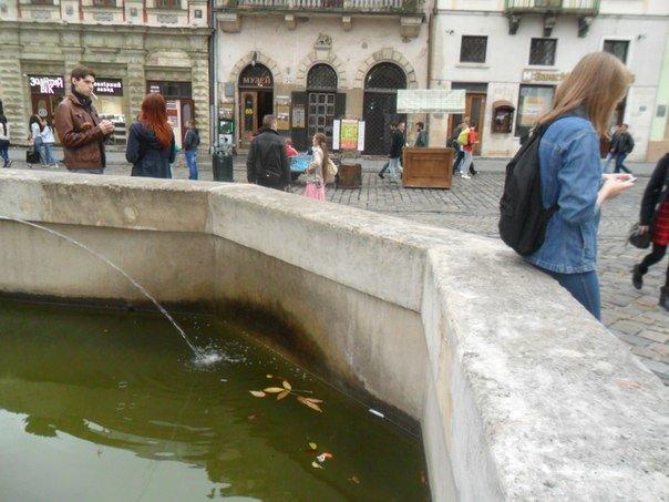 У центрі Львова античні фонтани перетворили на смітники (ФОТО+ВІДЕО) (фото) - фото 1