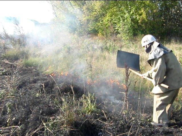 Фото пожежа с.Вiкторинiвка 3