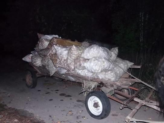 Трое мужчин пытались вывезти из Чернобыля радиоактивные яблоки (ФОТО) (фото) - фото 2
