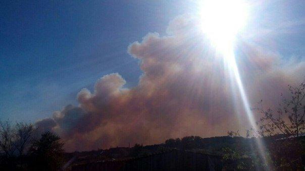 В Серафимовичском районе горит сухая трава, огонь приближается к населенным пунктам, фото-4