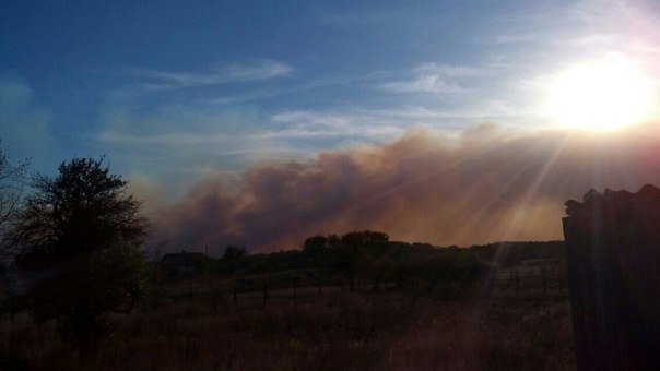 В Серафимовичском районе горит сухая трава, огонь приближается к населенным пунктам (фото) - фото 3