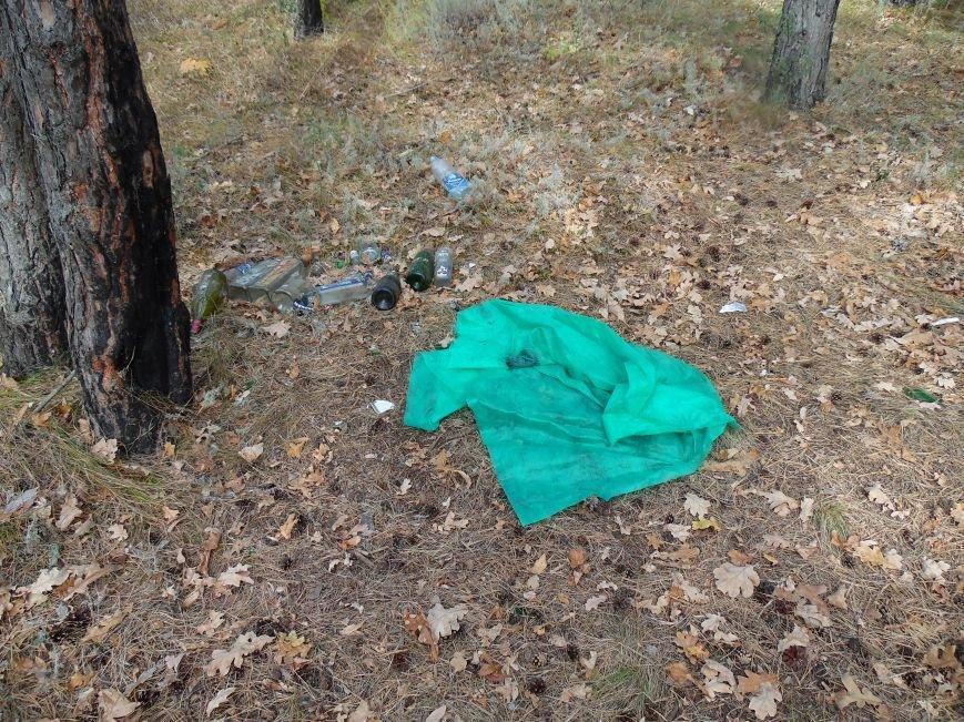 Леса Ульяновска полны неприятными сюрпризами (фото), фото-1