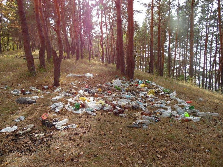 Леса Ульяновска полны неприятными сюрпризами (фото), фото-7