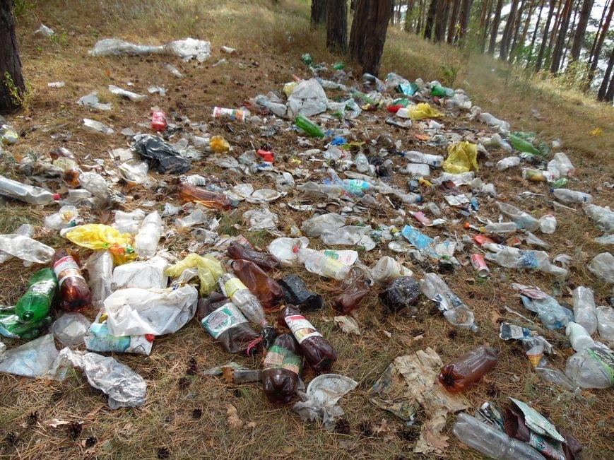 Леса Ульяновска полны неприятными сюрпризами (фото), фото-6