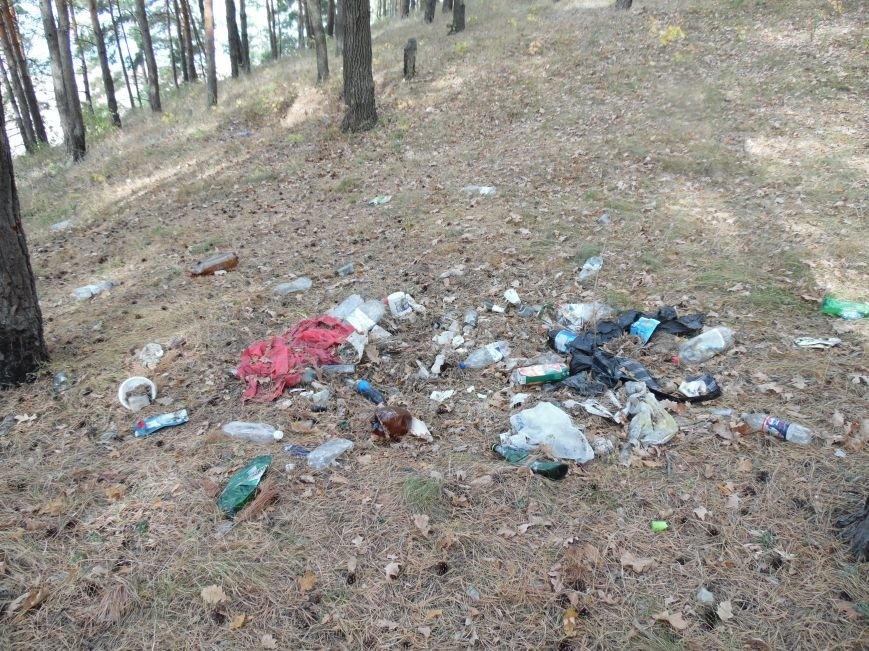 Леса Ульяновска полны неприятными сюрпризами (фото), фото-5