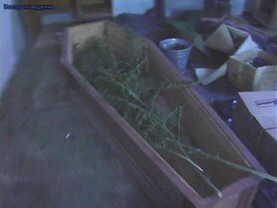 Житель Николаевщины хранил дома наркотики и арсенал оружия (ФОТО+ВИДЕО) (фото) - фото 6