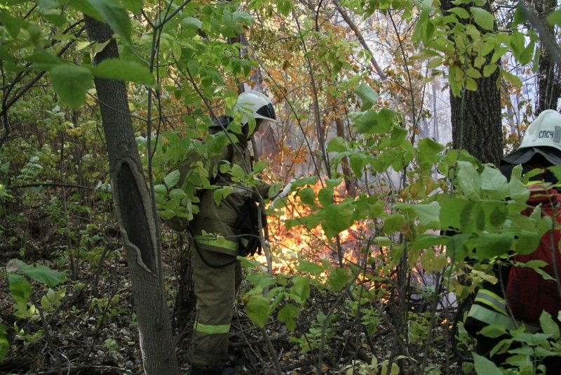 В Волгоградской области продолжается борьба с огнем, фото-1