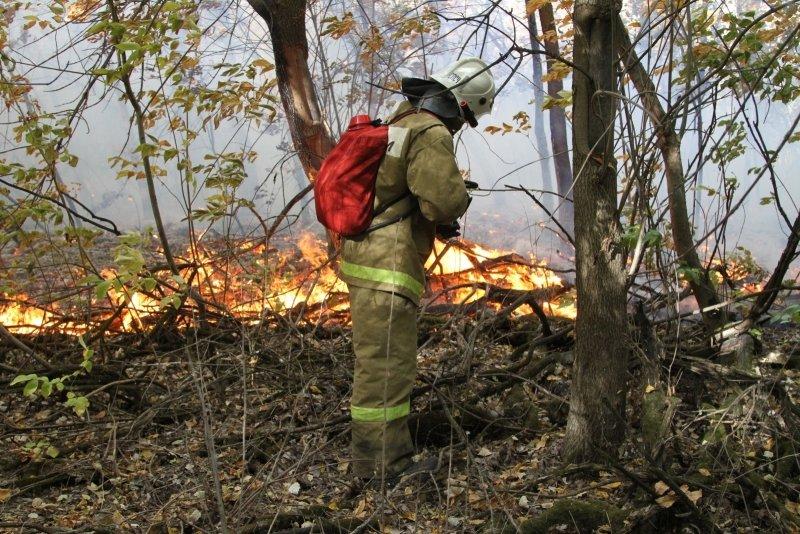 В Волгоградской области продолжается борьба с огнем, фото-3