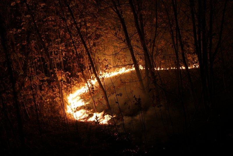 В Волгоградской области продолжается борьба с огнем, фото-7