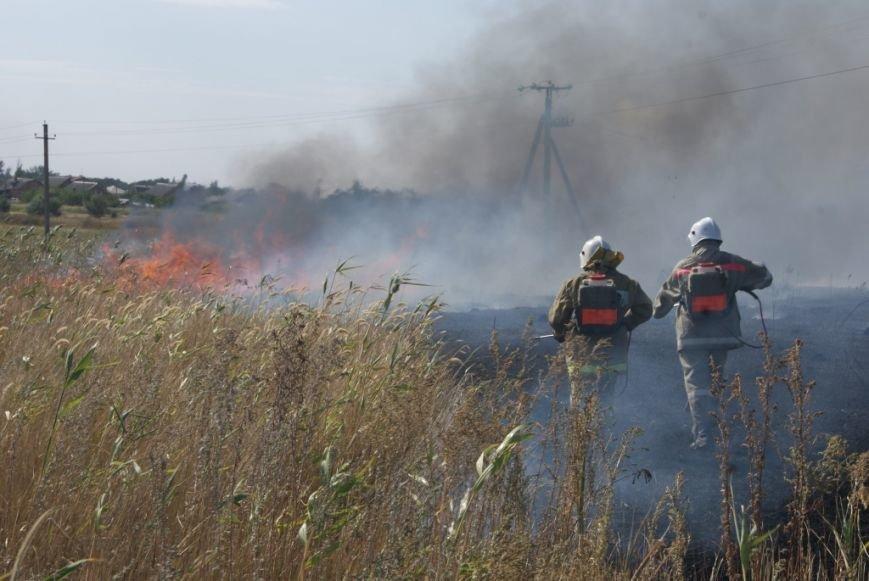 Около логистического терминала «Новошахтинский» горел камыш (фото) - фото 1