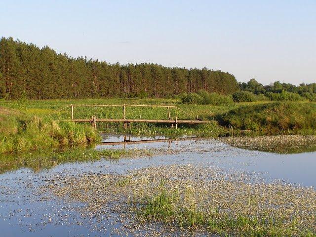 Межреченский национальный парк