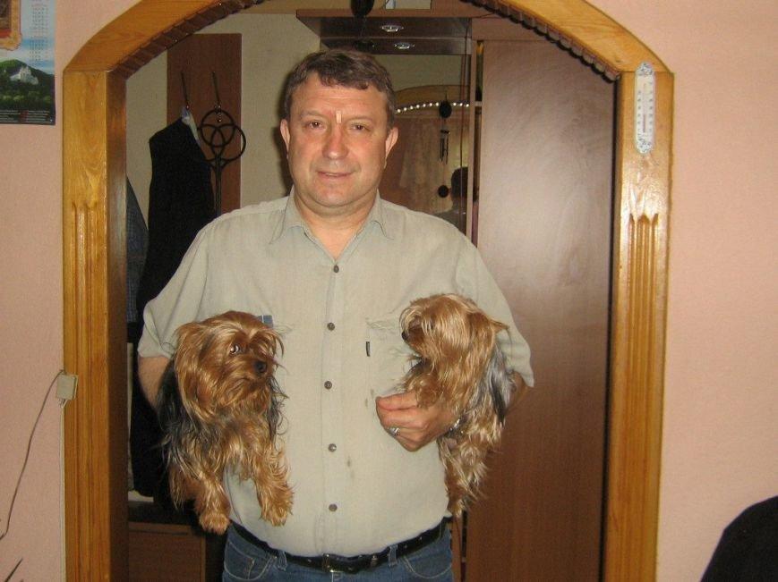 В Мариуполе украли двух элитных собак (ФОТО) (фото) - фото 1