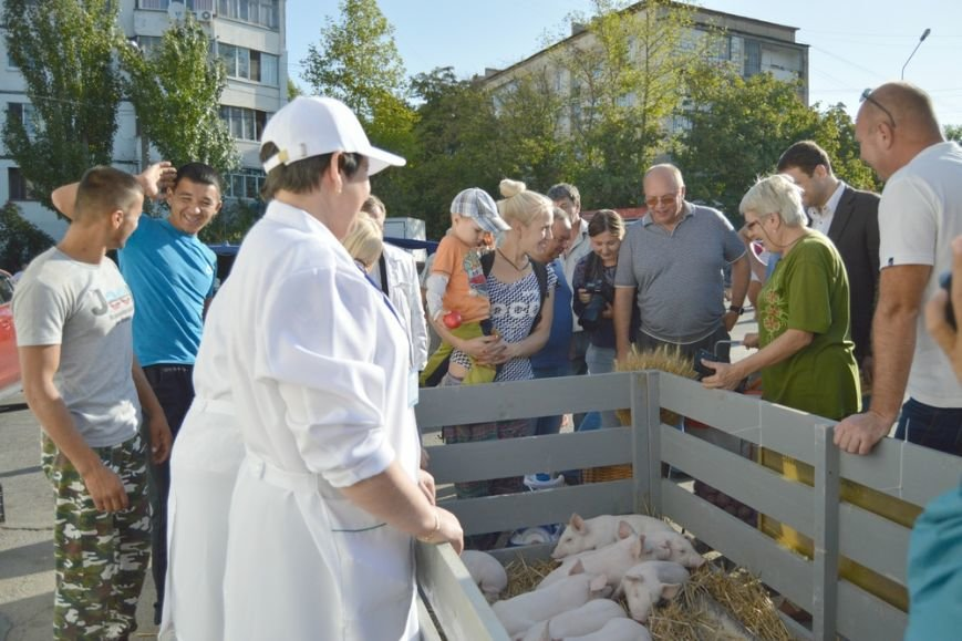 Бахарев: Первую после блокады Крыма сельхозярмарку в Симферополе люди покидали с полными сумками (ФОТО) (фото) - фото 7