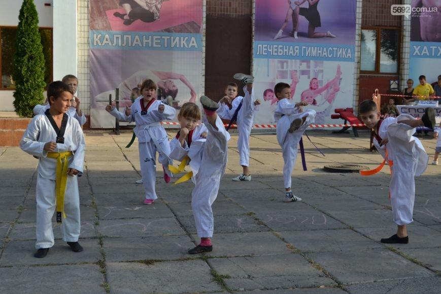 Праздник танцев и спорта устроили в Днепродзержинске, фото-4