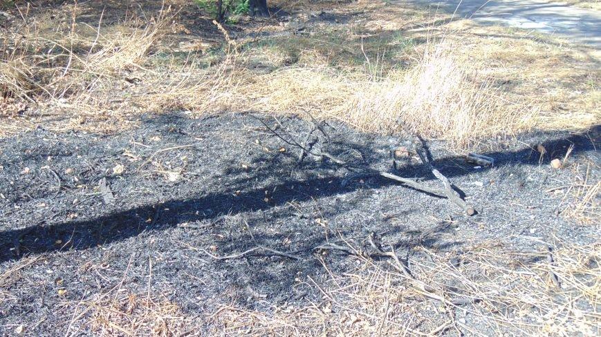 Гидрометцентр предупредил, что в Мариуполе ожидается пожарная опасность пятого класса (ФОТО) (фото) - фото 2
