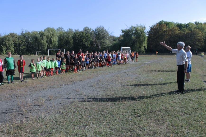 Артемовск и Анновка обошли всех на турнире в Доброполье (ФОТО), фото-1