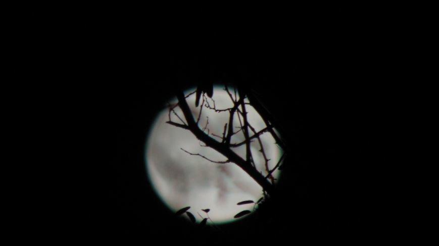 Над Мариуполем проявилось уникальное космическое явление (ФОТОФАКТ) (фото) - фото 1